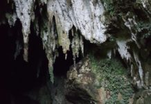 Camuy Cave Park, Camuy