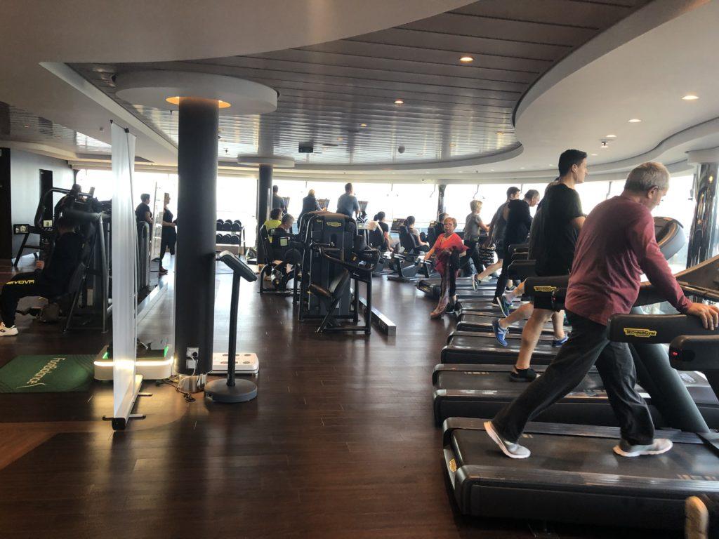 msc cruise, at sea wellness options