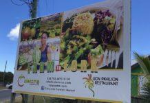 Colesome Farmers Market Antigua