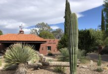 canyon ranch, tucson