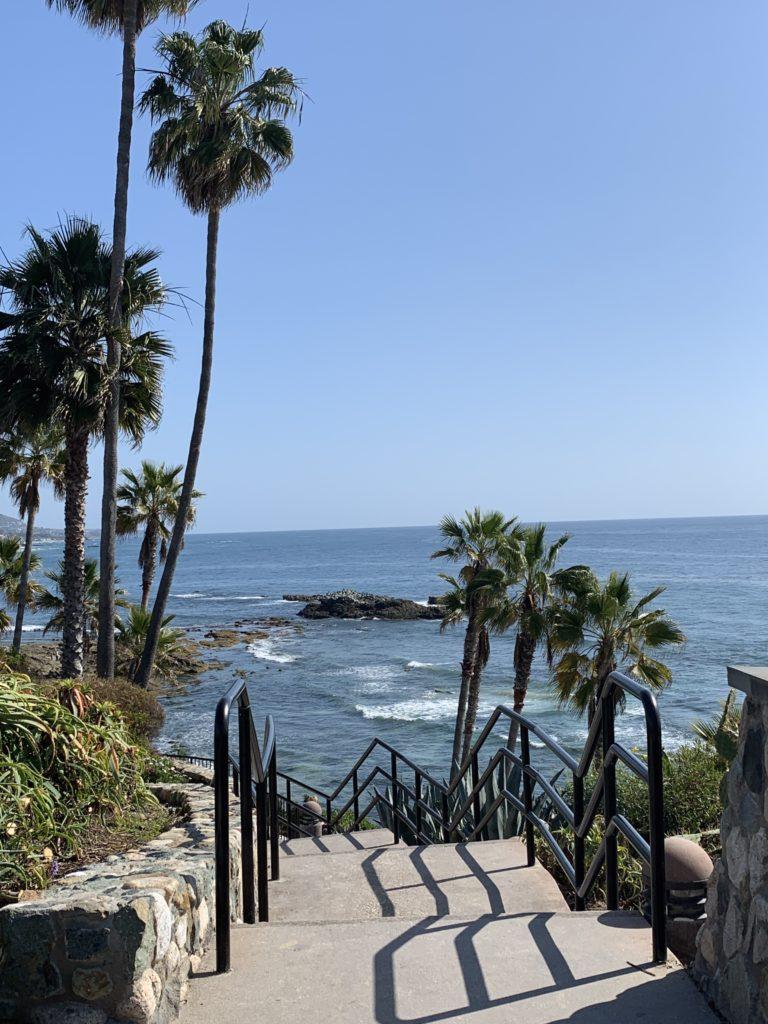 Zen Path Laguna Beach