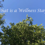 What is a Wellness Staycation