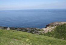 Newfoundland photo courtesy Travel to Wellness
